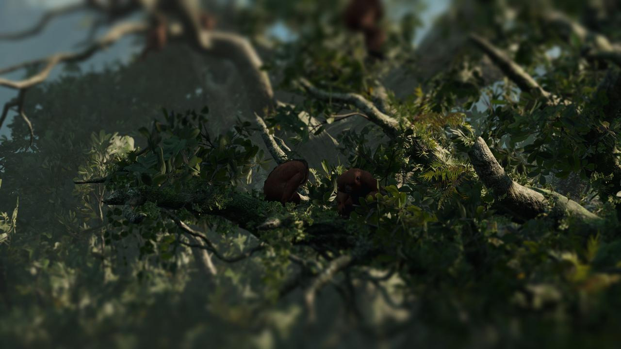 Shadow_of_the_Tomb_Raider_Screenshot_2018.09.18_-_15.11.58.86.jpg