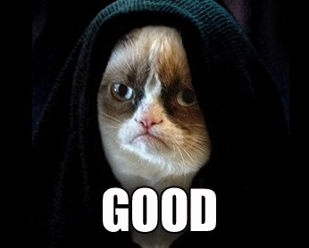 330908d1374953128-funny-pic-gif-thread-stupid-comments-grumpy-cat-good-n83ety.jpg