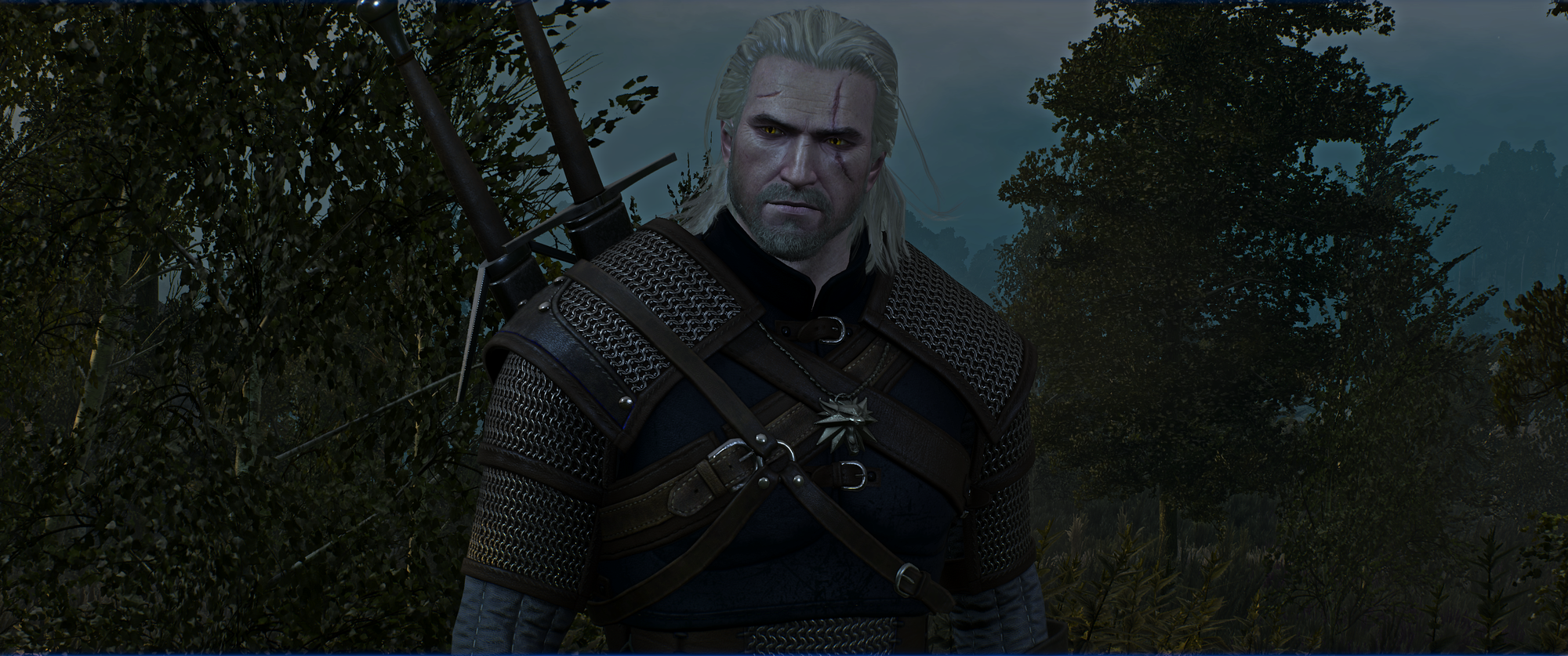The Witcher 3 Screenshot 2019.01.02 - 20.04.33.48.png
