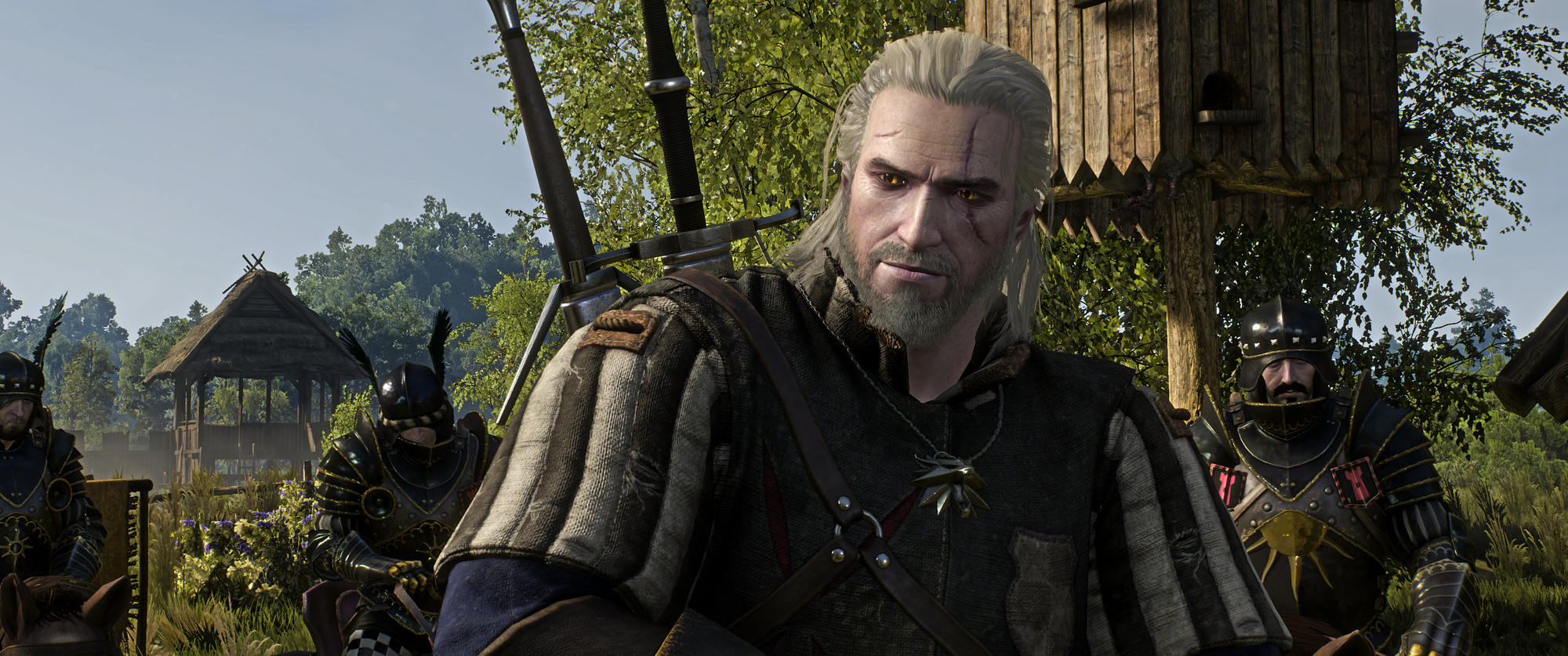 The Witcher 3 Screenshot 2019.01.02 - 22.49.24.19.png