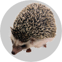 Badge_Hedgehog.png