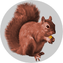 Badge_Squirrel.png