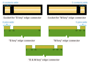 M2_Edge_Connector.png