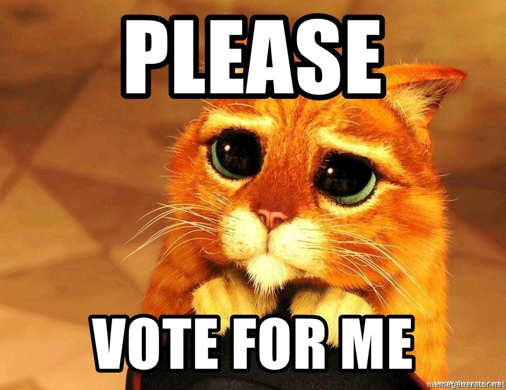 please-vote-for-me.jpg