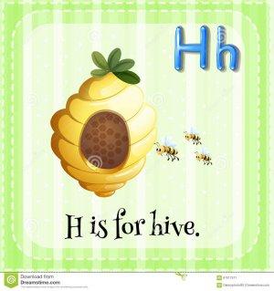 flashcard-letter-h-hive-illustration-61017517.jpg