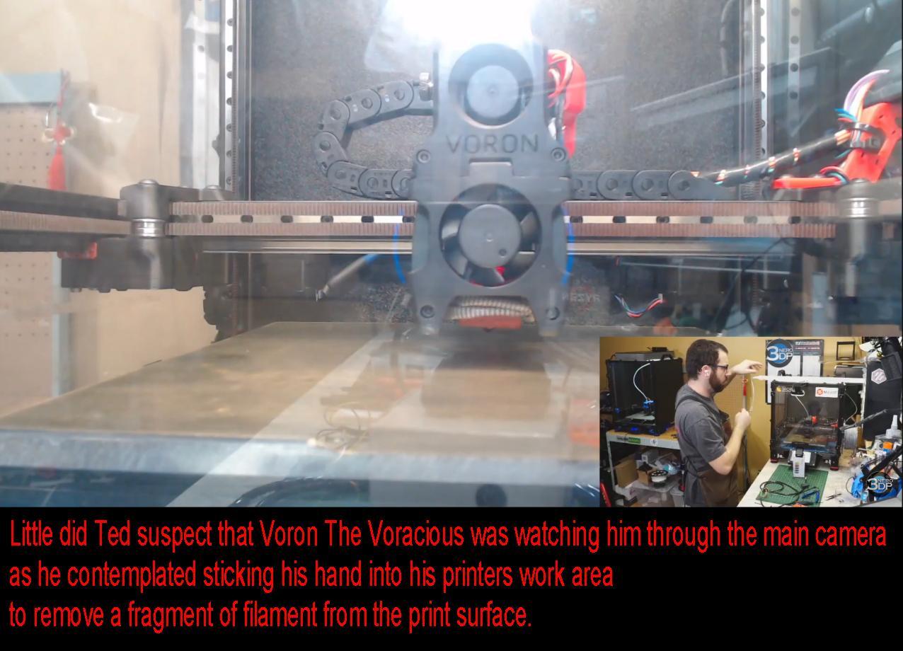 Voron1.jpg