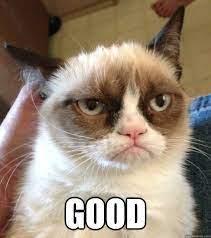 good - Grumpy cat christmas music - quickmeme