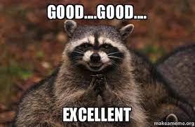 good....good.... excellent - Evil Plotting Raccoon | Make a Meme