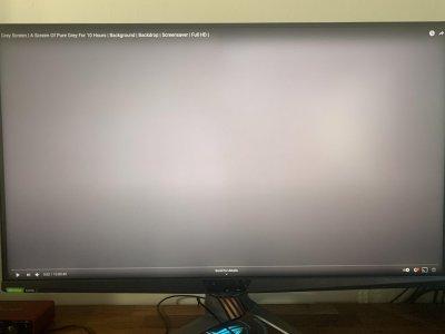 panel test.jpg